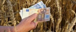 dinheiro_na_agricultura
