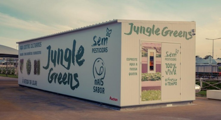 JUNGLE BOX_JUMBO SINTRA1