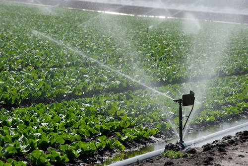 agriculture irrigation2