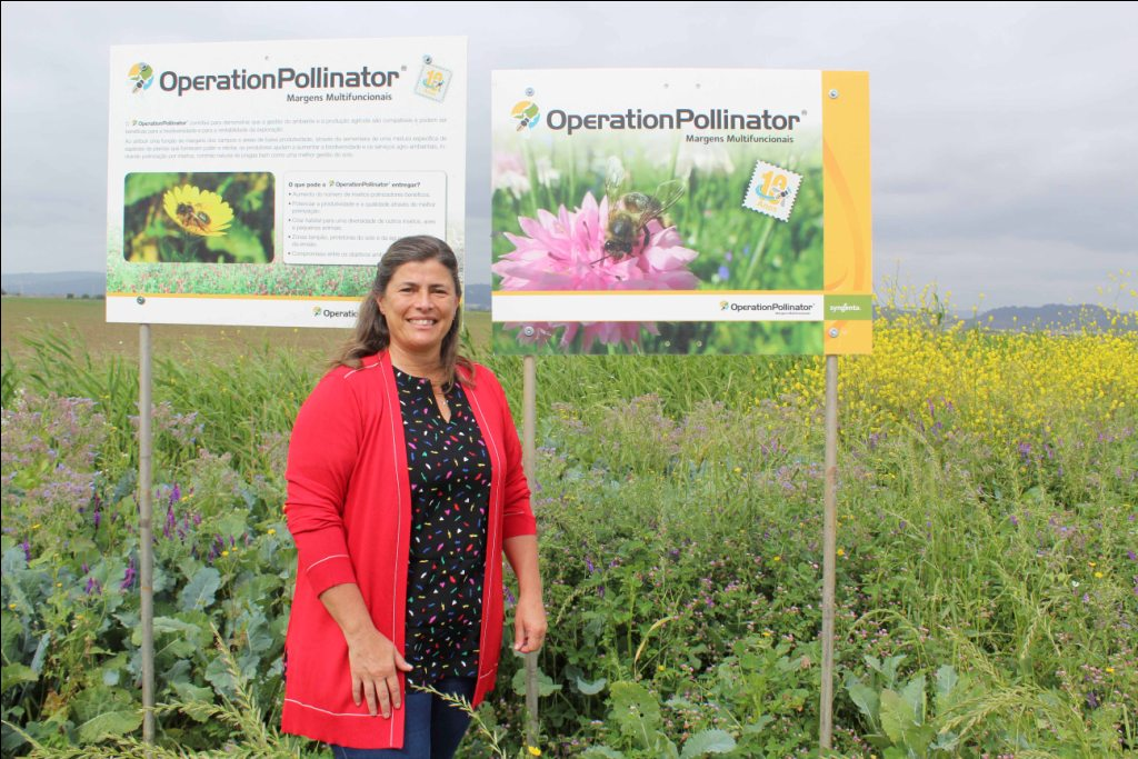 Operation Pollinator _Sogepoc_Maio2020a