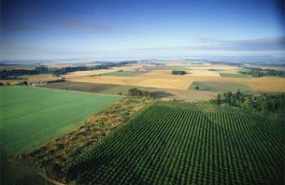 agricultura2_GR
