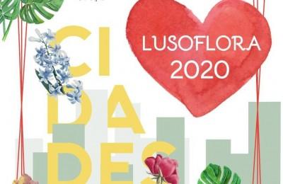 Lusoflora1